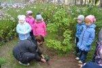 Участие в смотре-конкурсе по экологическому воспитанию 2013 г